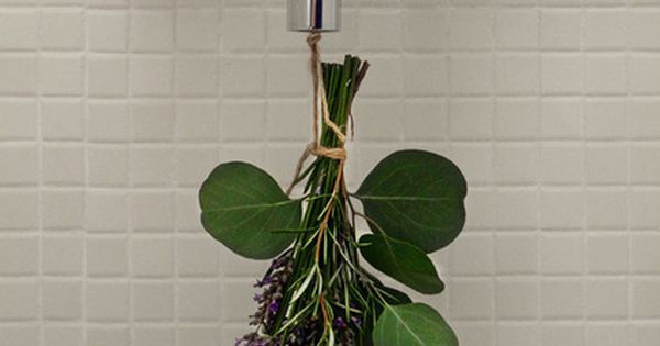 Fresh, Natural Idea for a Shower - Eucalyptus, Rosemary, and Lavender?