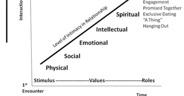 Stimulus-Value-Role Model