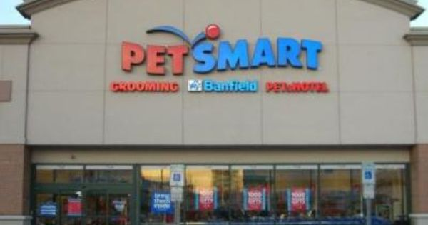 My Favorite Reason To Go To Petsmart Is To See All The Cats And Kittens Available For Adoption Petsmart Doggie Day Camp Pet Smart Store
