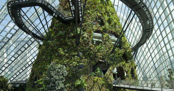 Jardins d hiver singapour winter gardens jardins d - Jardins dhiver com ...
