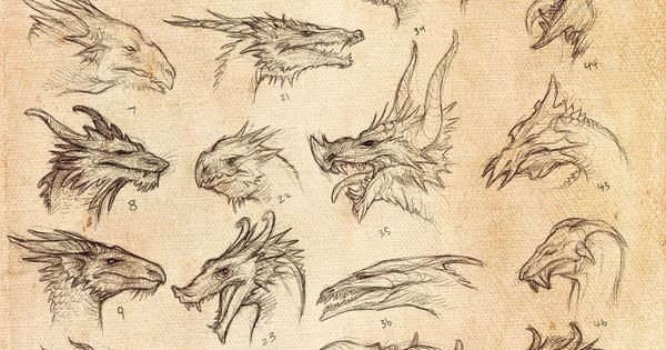 Dragon Heads by ~KatePfeilschiefter on deviantART...Wicked cool!! :D dragon tattoos tattoo
