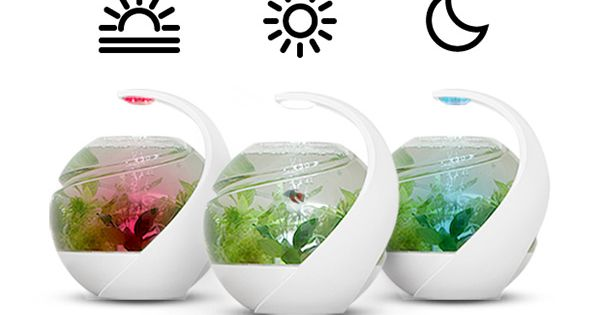 Avo self cleaning fish tank gift ideas pinterest for Avo fish tank