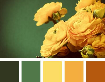 A range of flower yellow-orange shades is naturally complemented by emerald and