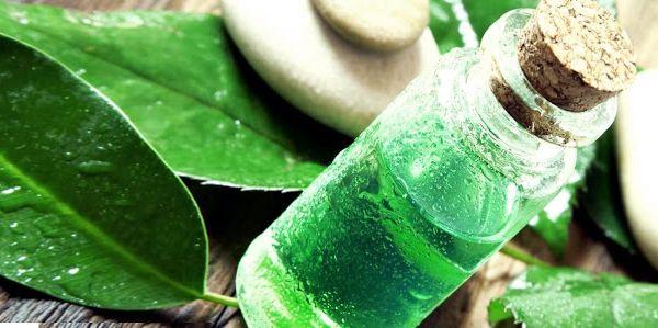 20 وصفة لعلاج قشرة الشعر نهائيا وصفاتي In 2020 Oils For Dandruff Tea Tree Oil Uses Dandruff Treatment