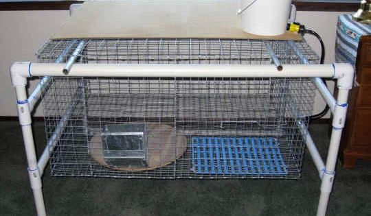 Very cool pvc frame for rabbits rabbits pinterest for Pvc rabbit cage