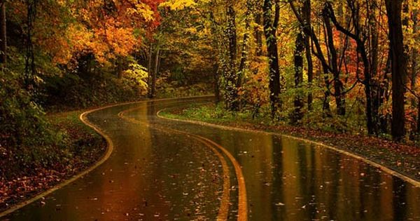 ༺♥༻ Appalachian mountains autumn rain ༺♥༻
