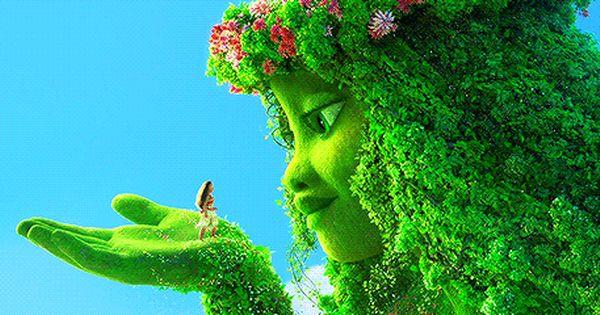 Foto Met Animatie Animatie Foto