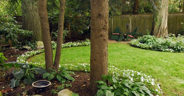 Landscaping Design Ideas For Backyard Concept Brilliant Review