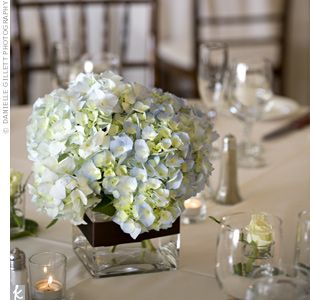 Hydrangea Flower Wedding Arrangements Fall The Wedding Specialists Blue Hydrangea Centerpieces Hydrangea Centerpiece Simple Hydrangeas