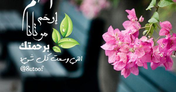 قطوف دعوية 8utoof Twitter Cover Photos Facebook Unique Islamic Pictures Aesthetic Pastel Wallpaper