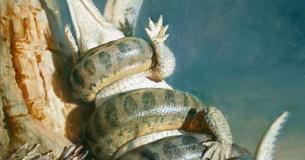 Paleoillustration: Titanoboa cerrejonensis by James Gurney ...