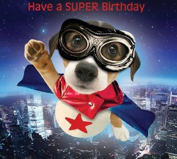 Greetings Cards Happy Birthday Cards Dogs Jack Russell Te Happy Birthday Images Animal Jack Russ Dog Birthday Card Happy Birthday Cards Happy Birthday Dog