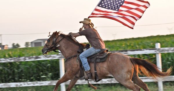 4th of july horse pics