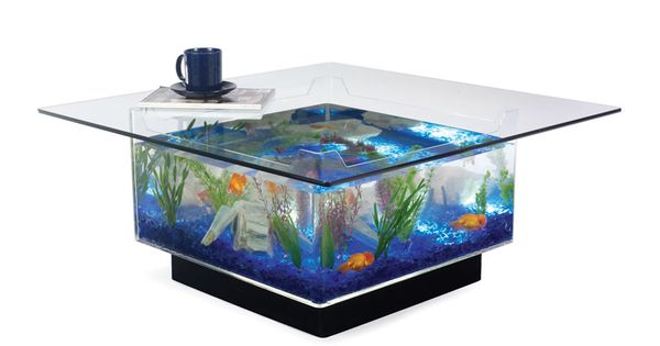 Awesome aquarium coffee table. Too bad I HATE cleaning fish tanks.