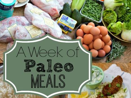 Bestselling Paleo Recipe Book http://www.healthyoptins.com/ A Week of Paleo Meals from And