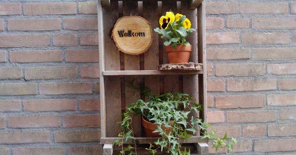 Aardappelkist met planten en schijf hout pinterest planten tuin en kist - Idee decoratie terras ...