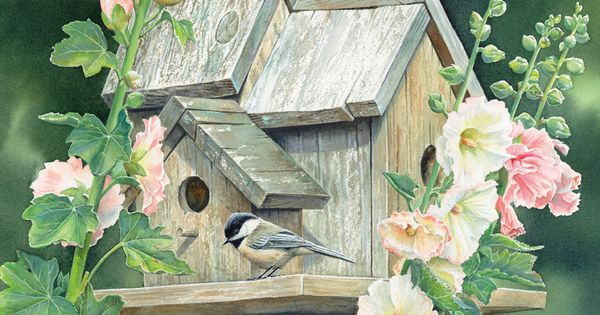 Lang May 2015 Wallpaper Songbirds Vogelhauschen Stockrosen Vogelhaus