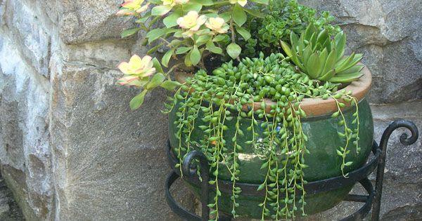 i love the cascading succulents garden ideas. Black Bedroom Furniture Sets. Home Design Ideas