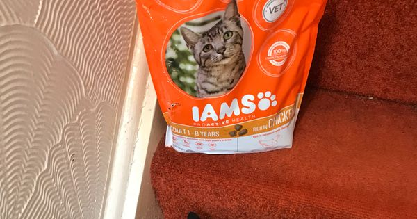 Iams Proactive Health Trial Prima Flowers Crackle Painting Health
