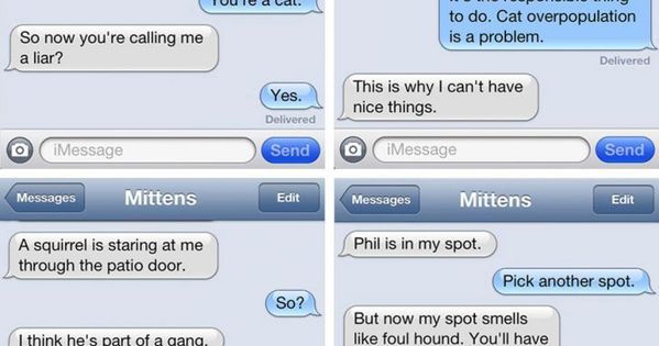 The cats person dog texts , mittens
