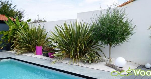 Quelles plantes pour jardin style bord de mer for Decoration jardin bord de mer