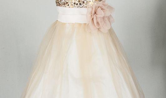 flower girl blush and champagne dress | Champagne Flower Girl Dress