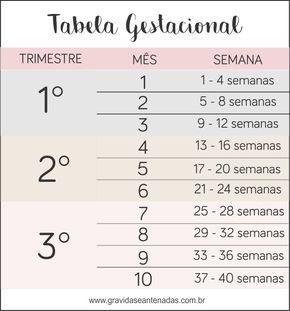 Tabela Gestacional Meses X Semanas Aprenda A Calcular Com Imagens