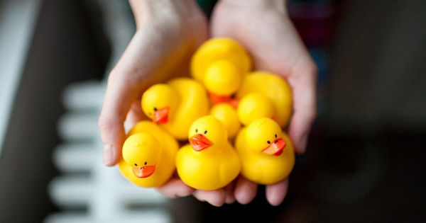 We love rubber duckies nationalrubberduckyday rubber for Vasca per anatre