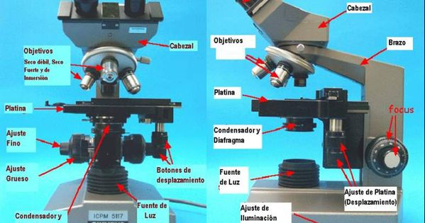 Resultado De Imagen Para Partes Del Microscopio Compuesto Quadcopter