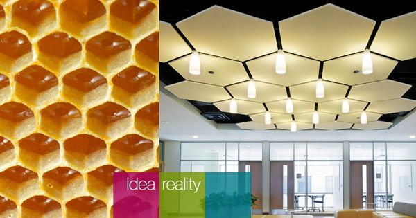 Armstrong Honeycomb Acoustical Panels Commercial Design