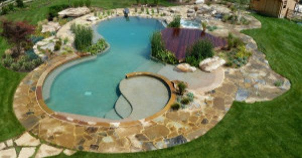 Considering A Natural Swimming Pool Learn The Pros And Cons Share Your Backyard Inspirations