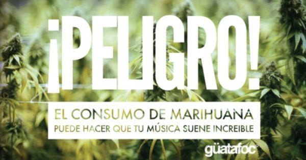 ¡ PELIGRO ! El Consumo De Marihuana Puede Hacer Que Tu