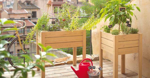 un mini potager sur mon balcon minis and deco