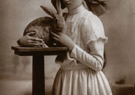 (Girl with rabbit, c.1909). pets animals vintage girl Edwardian bunny rabbit cute