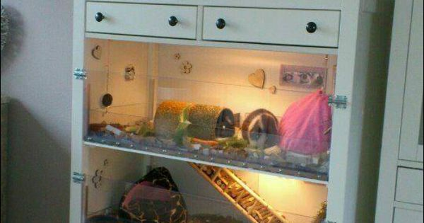 Turn a dresser into animal cages awesome idea new for Diy guinea pig cage from dresser