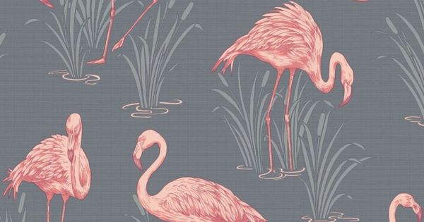 lagon flamant rose gris corail papier peint arthouse vintage 252603 papier pink floyd. Black Bedroom Furniture Sets. Home Design Ideas