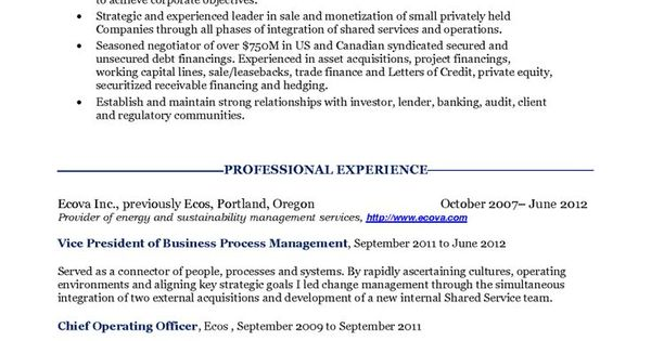 cfo resume objective riez sample resumes samples chief financial - chief operating officer sample resume