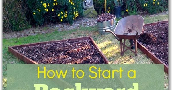 How to Start a Backyard Vegetable Garden | Hometalk: Gardening