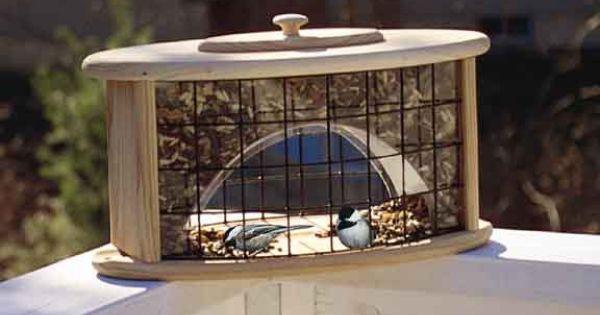 Deck Railing Feeder Awesome Bird Houses Amp Feeders