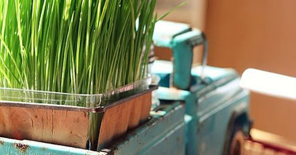 old tin child toy truck with cat grass! / GREAT use of