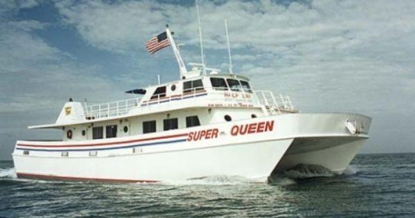 Deep sea fishing boat florida dolphin tours clearwater for Deep sea fishing clearwater fl