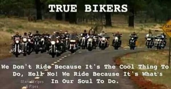 Latest Designs In Motorcycle Themed Tshirts New Collection Launched Checkout Biker Quotes Biker Bike Quotes