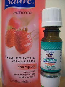 e7fb51236b59d153cd6f8167d30cd566 - How To Get Rid Of Lice Using Tea Tree Oil