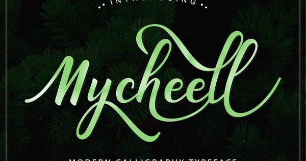 Mycheell Script a new fresh & modern script with a handmade calligraphy style