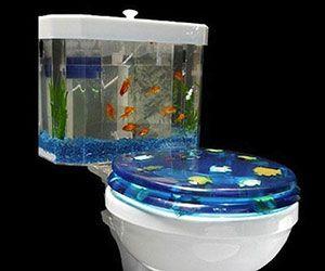 Fishbowl Toilet Weird Furniture Cool Toilets Cool Fish Tanks