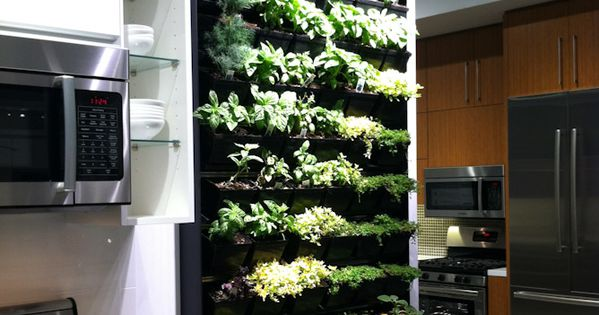 Herb garden wall inside - 33 Amazing Ideas That Will Make Your