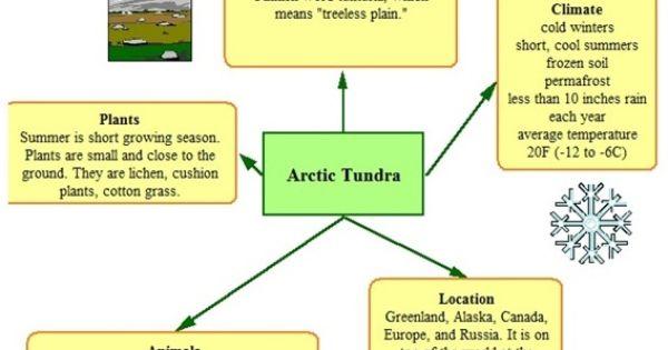 types of classification essay topics