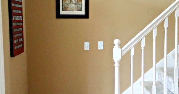 Benjamin Moore Spice Gold Walls Cherry Floors White Trim