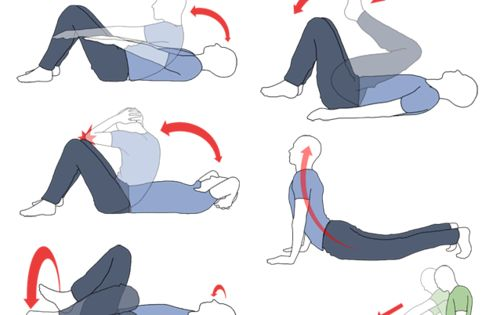lower stomach exercise : We ALL know that the lower stomach is