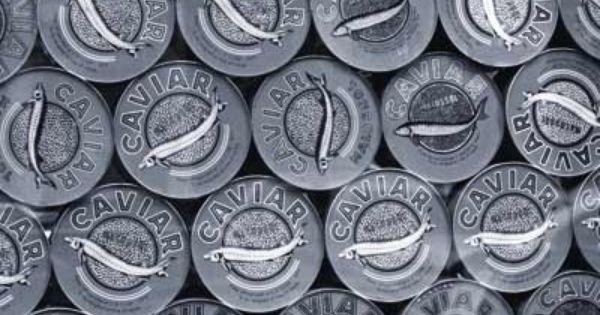 Caviar Large Black White Paperroom Eclectic Wallpaper Wallpaper Petrol